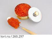 Купить «Икра красная», фото № 260297, снято 7 февраля 2008 г. (c) Татьяна Белова / Фотобанк Лори
