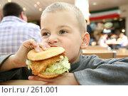 Купить «Мальчик ест гамбургер», фото № 261001, снято 25 августа 2019 г. (c) Losevsky Pavel / Фотобанк Лори