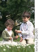 Купить «Весенняя идиллия», фото № 262001, снято 24 апреля 2008 г. (c) Екатерина Соловьева / Фотобанк Лори