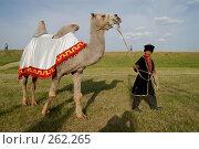Купить «Мужчина в национальном костюме ведет под уздцы верблюда.Калмыкия.», фото № 262265, снято 26 мая 2007 г. (c) Виктор Филиппович Погонцев / Фотобанк Лори