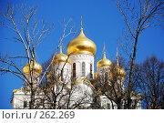 Купить «Золотые купола», фото № 262269, снято 21 апреля 2008 г. (c) Лифанцева Елена / Фотобанк Лори