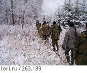 Купить «На охотничьей тропе», фото № 263189, снято 5 ноября 2007 г. (c) Вячеслав Потапов / Фотобанк Лори