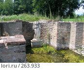 Купить «Раскопки древнего города вблизи Олимпа. Греция», фото № 263933, снято 29 июня 2007 г. (c) Юлия Селезнева / Фотобанк Лори