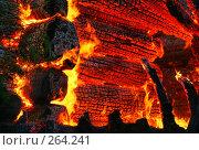 Купить «Пожар. Текстура горящего дерева. Фрагмент дома.», фото № 264241, снято 1 ноября 2007 г. (c) Татьяна Белова / Фотобанк Лори