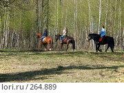 Купить «Прогулка на лошадях по весеннему лесу», эксклюзивное фото № 264889, снято 27 апреля 2008 г. (c) Alexei Tavix / Фотобанк Лори