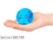 Купить «Рука держит земной шар», фото № 265105, снято 1 апреля 2008 г. (c) Андрей Армягов / Фотобанк Лори