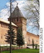 Купить «Крепостная стена. Город Смоленск», фото № 265829, снято 26 апреля 2008 г. (c) Примак Полина / Фотобанк Лори
