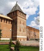 Купить «Крепостная стена. г.Смоленск», фото № 265833, снято 26 апреля 2008 г. (c) Примак Полина / Фотобанк Лори