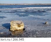 Берег, фото № 266945, снято 23 марта 2008 г. (c) Бяков Вячеслав / Фотобанк Лори