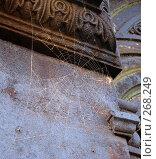 Купить «Паутина на старом склепе», фото № 268249, снято 13 апреля 2008 г. (c) Игорь Муртазин / Фотобанк Лори
