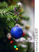 Купить «Новогодний шар», фото № 272837, снято 24 ноября 2006 г. (c) Морозова Татьяна / Фотобанк Лори