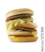 Купить «Большой гамбургер», фото № 273569, снято 23 апреля 2006 г. (c) Роман Сигаев / Фотобанк Лори