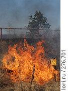 Купить «Горит сухая трава», фото № 276701, снято 7 мая 2008 г. (c) Григорий Погребняк / Фотобанк Лори