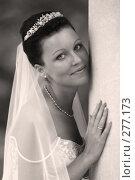 Красивая невеста. Стоковое фото, фотограф Морозова Татьяна / Фотобанк Лори