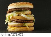 Купить «Гамбургер», фото № 278673, снято 23 апреля 2006 г. (c) Роман Сигаев / Фотобанк Лори