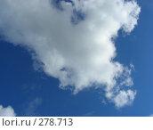 Купить «Голубое небо с облаками», эксклюзивное фото № 278713, снято 6 мая 2008 г. (c) lana1501 / Фотобанк Лори