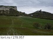 Купить «Дорога через поле», фото № 278957, снято 2 мая 2007 г. (c) Андрей Пашкевич / Фотобанк Лори