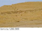 Купить «Песчаный холм со следами человеческих ног», фото № 280989, снято 10 мая 2008 г. (c) Валерий Лисейкин / Фотобанк Лори