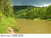 Купить «Бердь. Река в Сибири.», фото № 288929, снято 11 июня 2007 г. (c) Селигеев Андрей Иванович / Фотобанк Лори