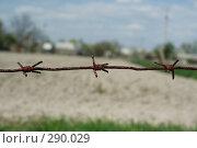 Купить «Колючая проволока», фото № 290029, снято 27 апреля 2008 г. (c) Юрий Гник / Фотобанк Лори