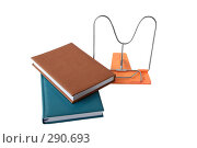 Подставка для книг. Стоковое фото, фотограф Светлана Симонова / Фотобанк Лори