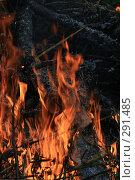 Купить «Пламя», фото № 291485, снято 2 мая 2008 г. (c) Виктория Щепкина / Фотобанк Лори
