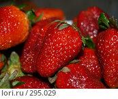 Купить «Клубника», фото № 295029, снято 1 мая 2008 г. (c) Примак Полина / Фотобанк Лори
