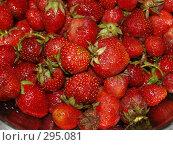 Купить «Клубника», фото № 295081, снято 18 июня 2007 г. (c) Примак Полина / Фотобанк Лори
