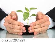 Купить «Концепция страхование оберегание жизни», фото № 297921, снято 30 апреля 2008 г. (c) Dzianis Miraniuk / Фотобанк Лори