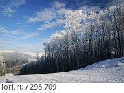 Купить «Горнолыжный спуск», фото № 298709, снято 20 января 2008 г. (c) Сергей Сынтин / Фотобанк Лори
