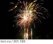 Огненная астра. Стоковое фото, фотограф Сергей Карцов / Фотобанк Лори