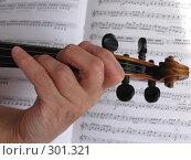 Купить «Рука скрипача», фото № 301321, снято 23 марта 2008 г. (c) Владислав Семенов / Фотобанк Лори