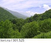 Купить «Горный пейзаж», фото № 301525, снято 7 июня 2007 г. (c) Емельянова Светлана Александровна / Фотобанк Лори