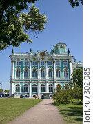 Купить «Санкт-Петербург. Зимний дворец.», фото № 302085, снято 28 мая 2008 г. (c) Александр Секретарев / Фотобанк Лори