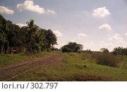 Купить «Куба. Железнодорожные рельсы.», эксклюзивное фото № 302797, снято 3 июня 2020 г. (c) Free Wind / Фотобанк Лори