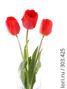 Купить «Букет красных тюльпанов на белом фоне», фото № 303425, снято 21 апреля 2008 г. (c) Александр Паррус / Фотобанк Лори