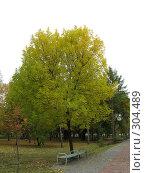 Купить «В парке», фото № 304489, снято 30 сентября 2007 г. (c) Ирина Стюфеева / Фотобанк Лори