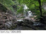Купить «Водопад Джур-Джур (Крым, село Генеральское)», фото № 304845, снято 23 мая 2008 г. (c) Олег Титов / Фотобанк Лори