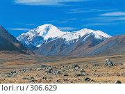 Купить «Высокогорное плато Укок в Горном Алтае», фото № 306629, снято 22 февраля 2019 г. (c) Гребенников Виталий / Фотобанк Лори