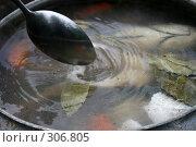 Купить «Уха», фото № 306805, снято 1 июня 2008 г. (c) Чернов Станислав / Фотобанк Лори