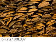 Купить «Русская поленница. Фоновое изображение.», фото № 308337, снято 18 апреля 2008 г. (c) Harry / Фотобанк Лори