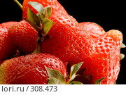 Купить «Спелая клубника», фото № 308473, снято 1 июня 2008 г. (c) Угоренков Александр / Фотобанк Лори