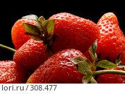 Купить «Спелая клубника», фото № 308477, снято 1 июня 2008 г. (c) Угоренков Александр / Фотобанк Лори