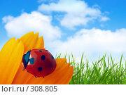 Купить «Божья коровка на цветке», фото № 308805, снято 26 апреля 2019 г. (c) Анатолий Типляшин / Фотобанк Лори