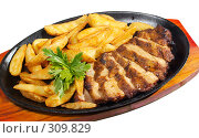 Купить «Мясо с жареной картошкой», фото № 309829, снято 29 мая 2008 г. (c) Дмитрий Ощепков / Фотобанк Лори