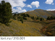 Алтайские горы, фото № 310001, снято 26 сентября 2017 г. (c) Андрей Пашкевич / Фотобанк Лори