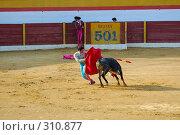 Купить «Коррида», фото № 310877, снято 13 августа 2006 г. (c) Знаменский Олег / Фотобанк Лори