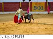 Купить «Коррида», фото № 310881, снято 13 августа 2006 г. (c) Знаменский Олег / Фотобанк Лори