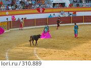 Купить «Коррида», фото № 310889, снято 13 августа 2006 г. (c) Знаменский Олег / Фотобанк Лори