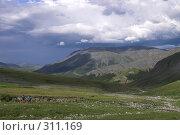 Купить «Полярный Урал. Долина.», фото № 311169, снято 3 августа 2007 г. (c) Роман Коротаев / Фотобанк Лори